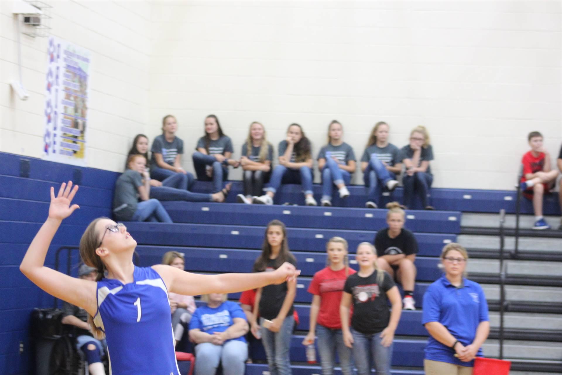 SE Volleyball vs Piketon