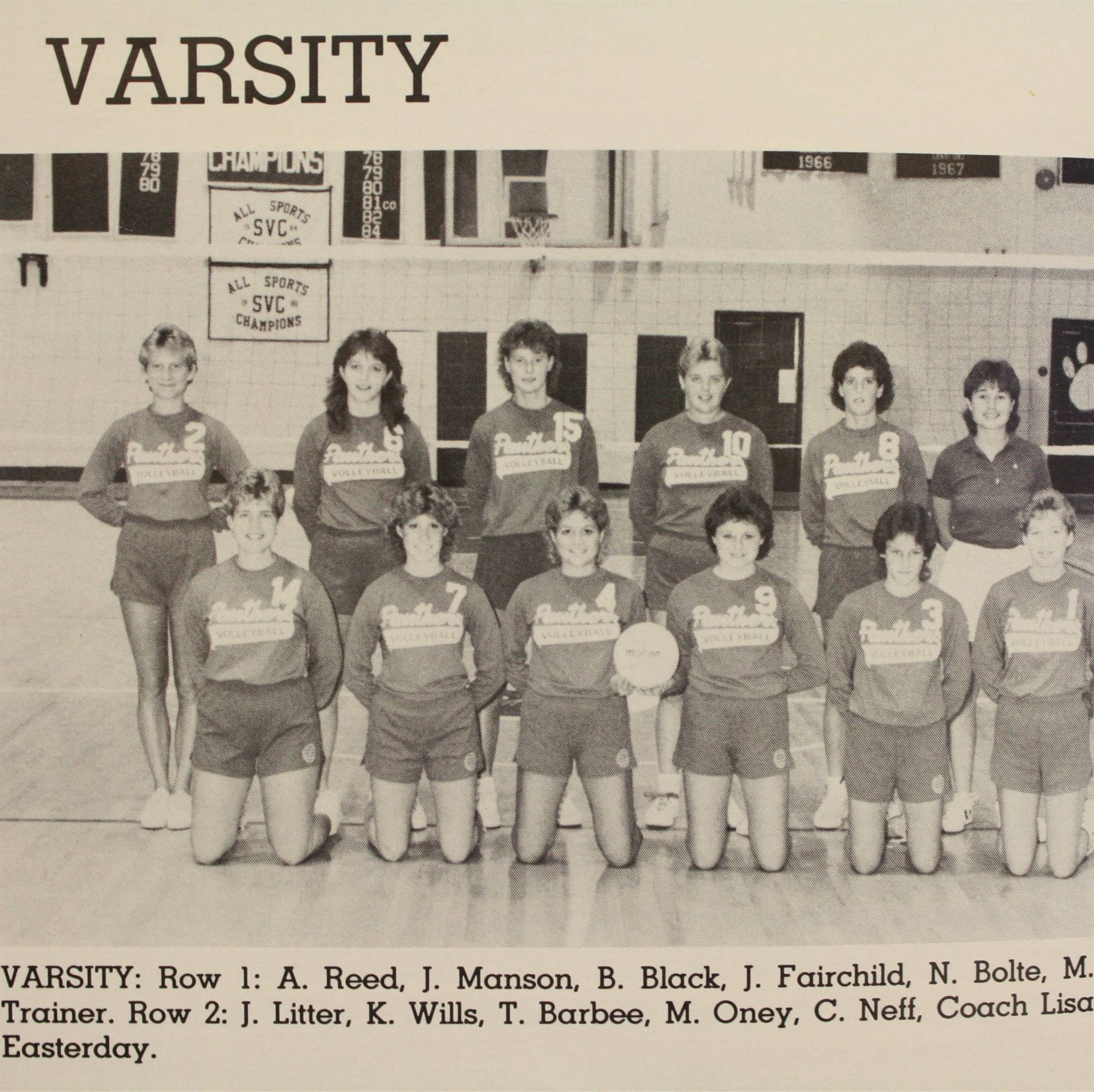 1987 Volleyball
