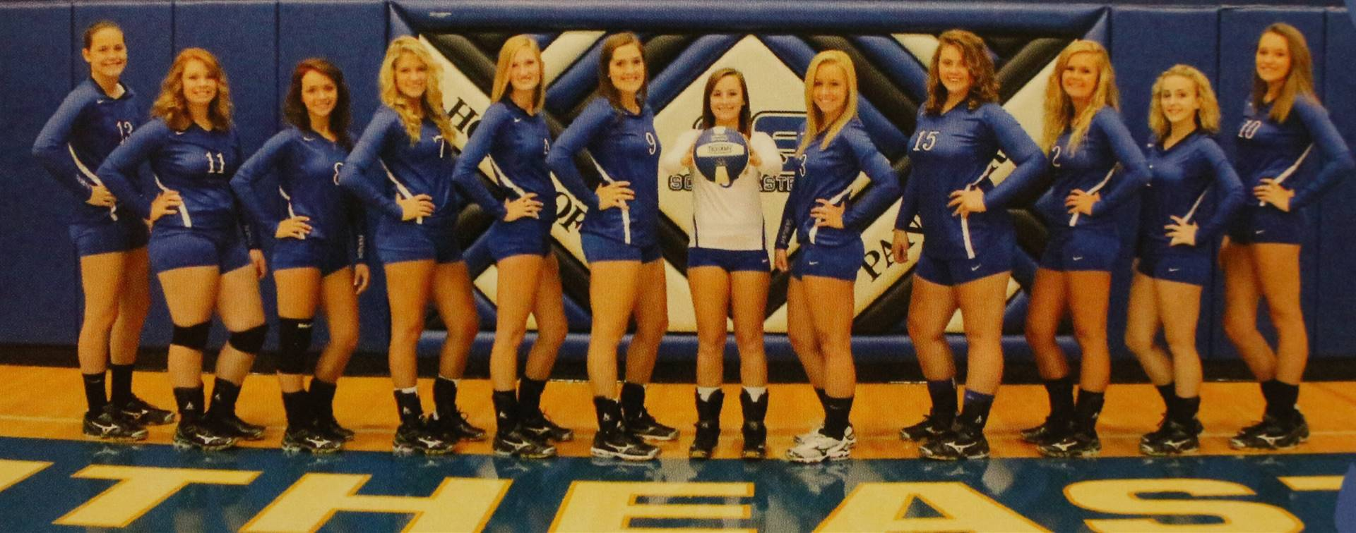 2015 Varsity Volleyball