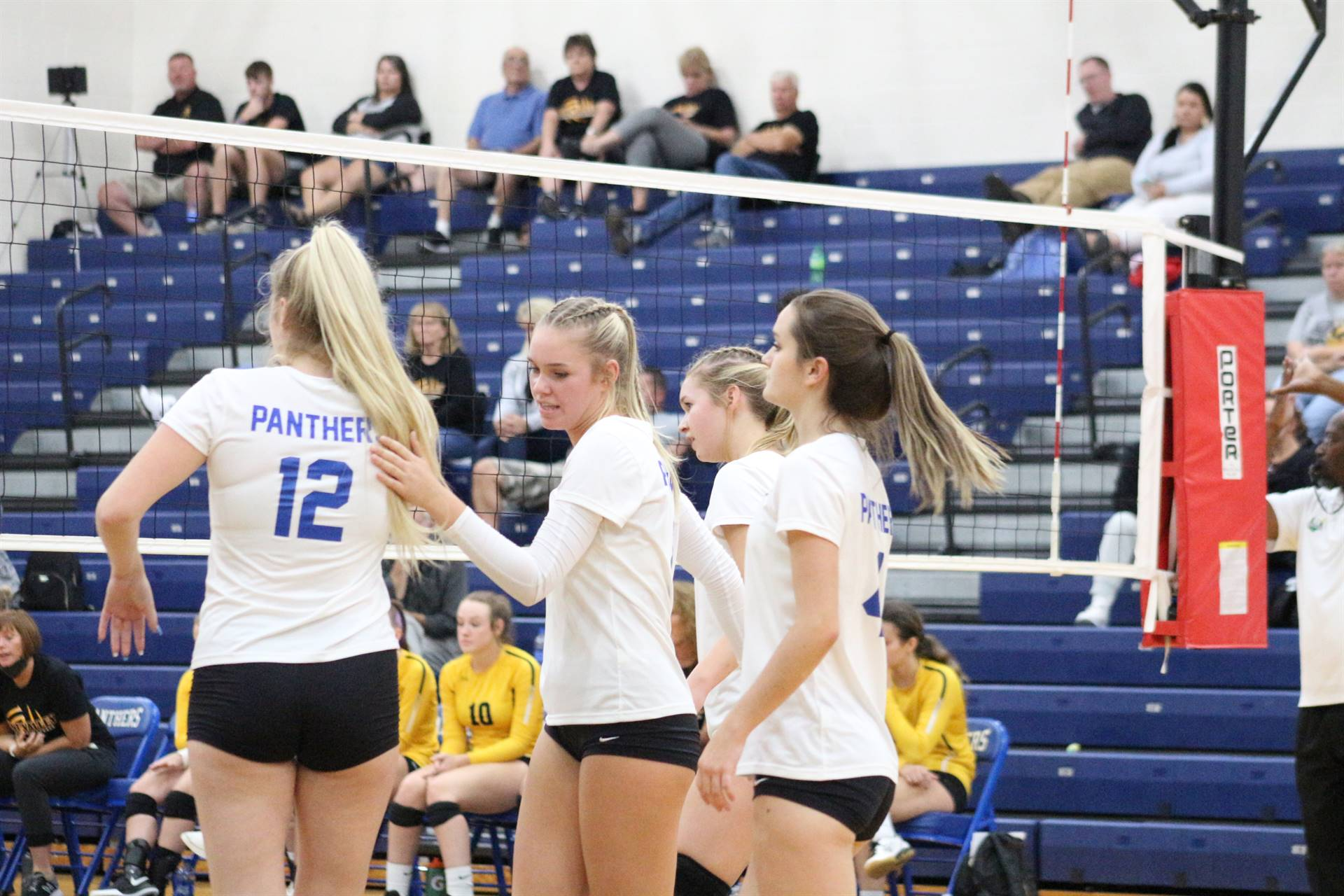 Volleyball vs Paint Valley