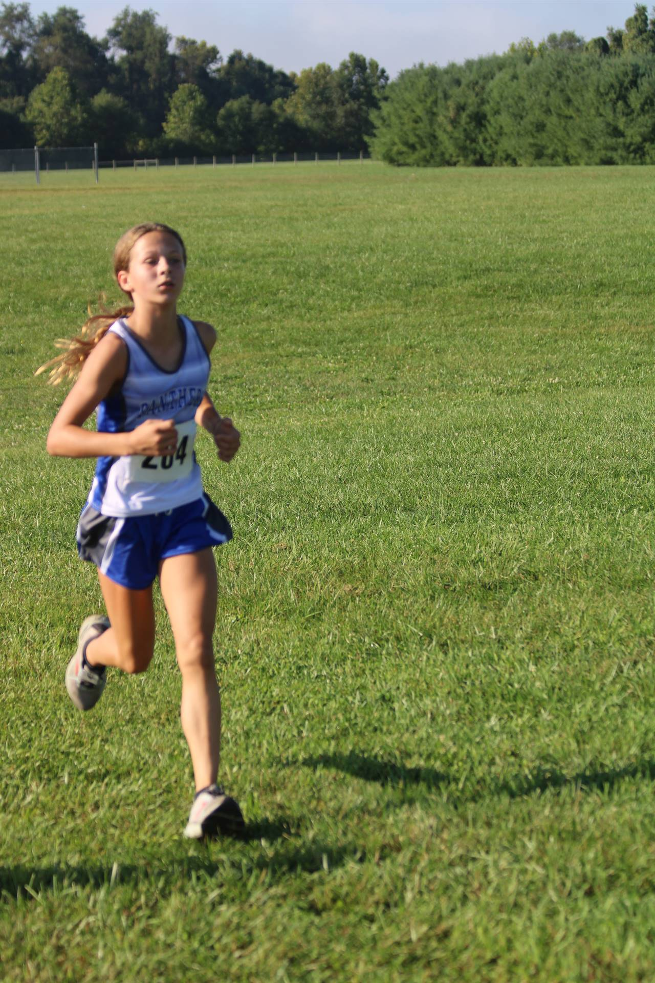 Aaron Reed Memorial Run